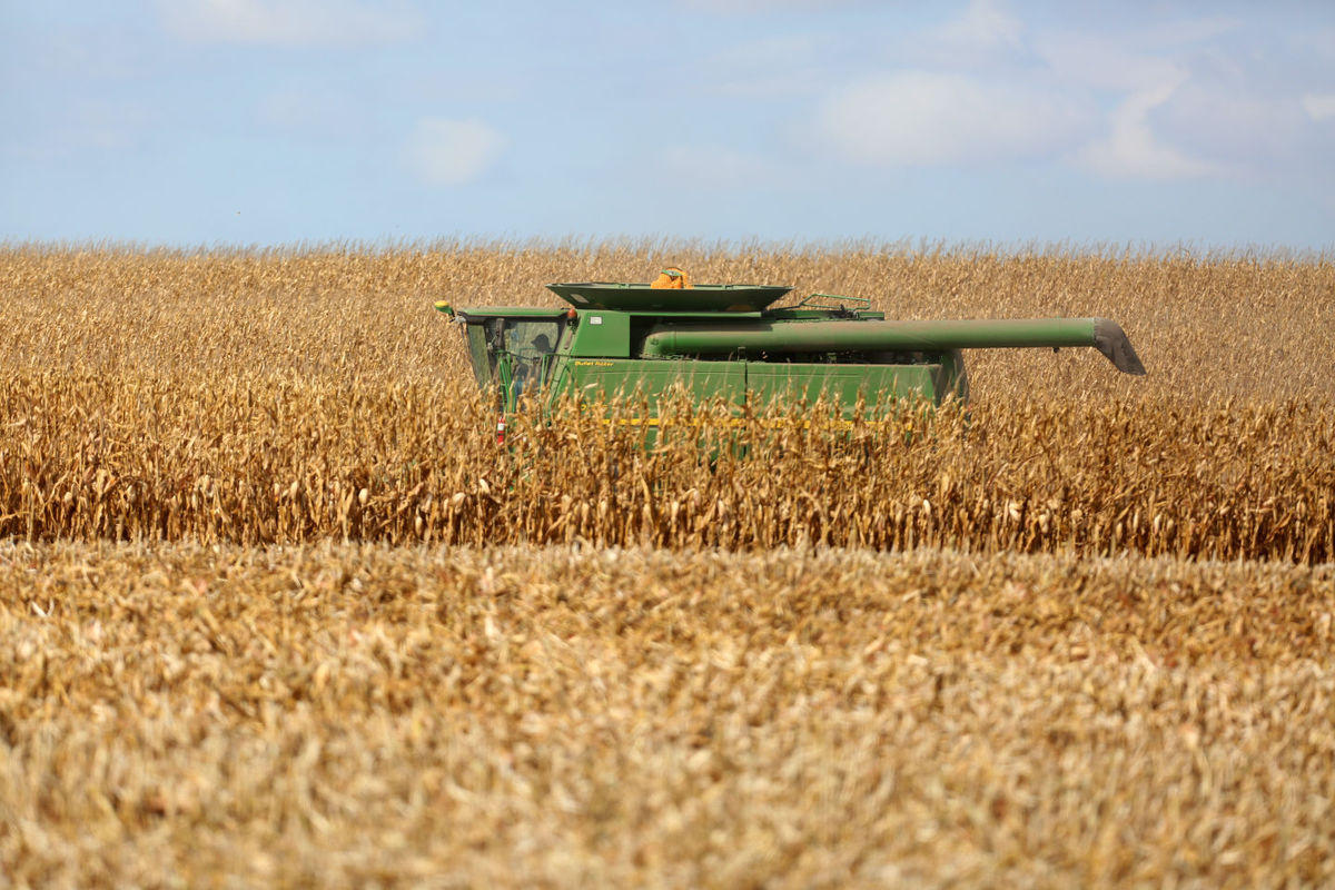 combine and field
