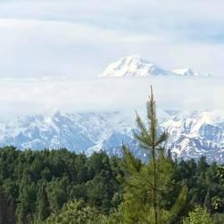 Alaska 3 - Denali